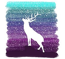 Deer from the Purple Dream Photographic Print