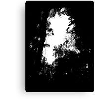 A break in the jungle Canvas Print