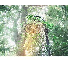 Nature wins Photographic Print
