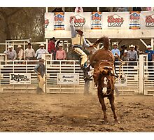 Rodeo Cowboy is Thrown from his Horse Photographic Print