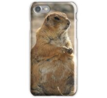 Groundhog Day iPhone Case/Skin