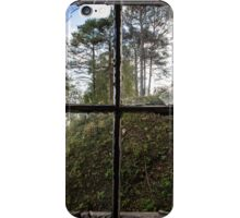 View from Decay II iPhone Case/Skin