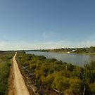 Crossing the Mighty Murray River by train. Murray Bridge. S.A. by Rita Blom