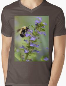 Blue Ajuga -- Bumble Bee Mens V-Neck T-Shirt