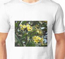 PLUMERIA OR FRANGIPANI FLOWER Unisex T-Shirt