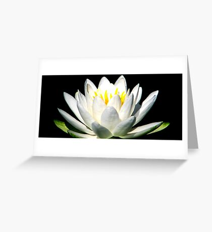 The Heart Of A Lotus Greeting Card