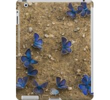The Butterfly Convention iPad Case/Skin