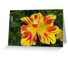 Jersey City, New Jersey, Flower Close-Up Greeting Card