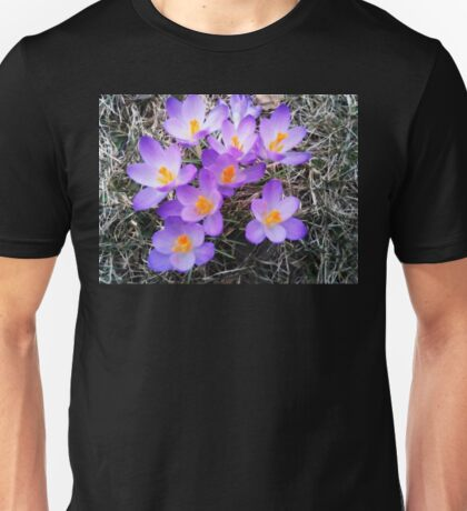 FIRST SIGNS OF SPRING Unisex T-Shirt