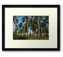 Coconut Jungle Paradise Framed Print