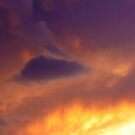 Eye in The Sky by Shawna Rowe