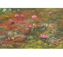 Water Lily Magic Photographic Print
