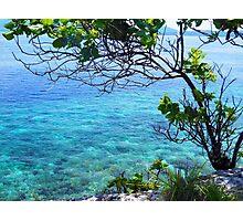 the translucent blue beach Photographic Print