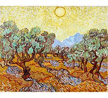 1889-Vincent van Gogh-Olive Trees with yellow sky and sun-73,66x92,71 Photographic Print