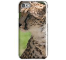 cheetah in the jungle iPhone Case/Skin