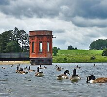 Sywell reservoir in Summer time by flashcompact