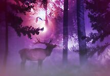 The Enchanted Forest  by Valerie Anne Kelly