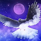 Midnight Dove by amira