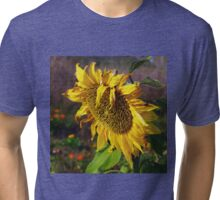 Oh sunny day Tri-blend T-Shirt