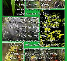 psalm 86:1-7 collage by dedmanshootn