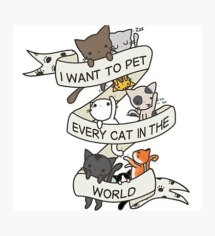 I want to pet every cat in the world! Photographic Print