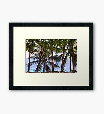 Coconut Trees Ocean Scenic View Framed Print