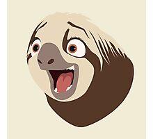 Sloth flash Photographic Print