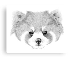 The Red Panda Canvas Print