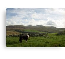 The beauty of Llanfairfechan Canvas Print