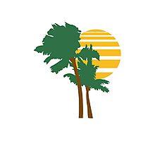 2 palm beach beautiful shape pattern design outlined umrandung sun sunset night evening sunrise morning Photographic Print