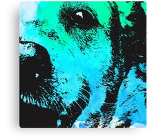 Water Dog Canvas Print