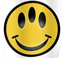 Evolution Inspired Smiley Emoticon  Poster