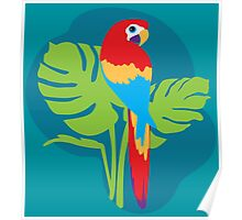 Parrot bright simple graphic art Poster