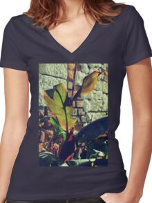 Canna indica #4 Women's Fitted V-Neck T-Shirt
