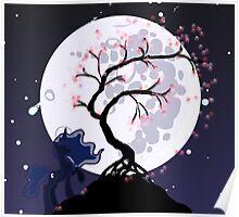 Princess Luna and the Moon Poster