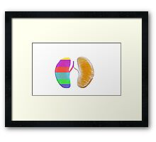 Color Lungs Framed Print
