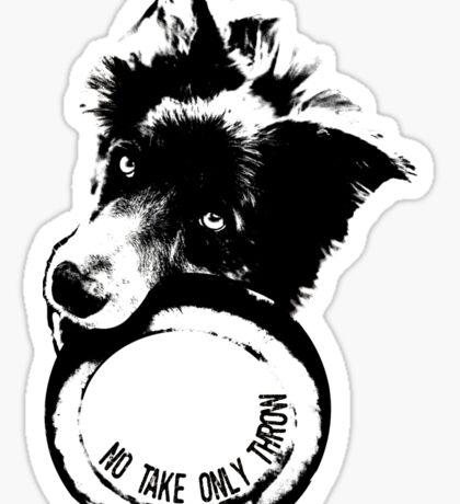 NO TAKE. ONLY THROW. (Border Collie) Sticker
