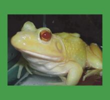 Albino Tree Frog One Piece - Short Sleeve