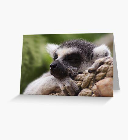 Shhhh I'm sleeping Greeting Card