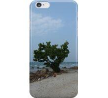 Thai Tree Daytime iPhone Case/Skin