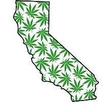 California (CA) Weed Leaf Pattern Photographic Print