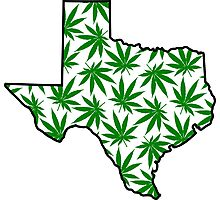 Texas (TX) Weed Leaf Pattern Photographic Print
