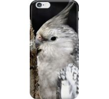White Faced Cockateal - NZ iPhone Case/Skin
