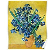 1890-Vincent van Gogh-Irises-73,5x92 Poster