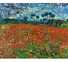 1890-Vincent van Gogh-Poppy field-82,7x102 Photographic Print