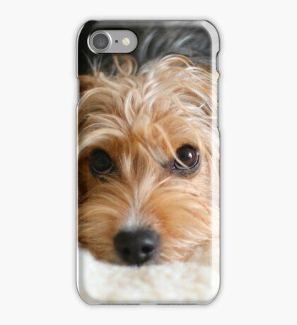 Puppy portrait iPhone Case/Skin