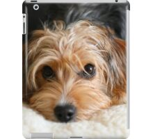 Puppy portrait iPad Case/Skin