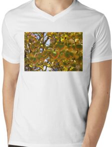 Rainbow Edges - Slowly Changing Leaves, Celebrating the Arrival of Autumn Mens V-Neck T-Shirt
