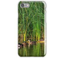 Great Massingham, Norfolk UK iPhone Case/Skin
