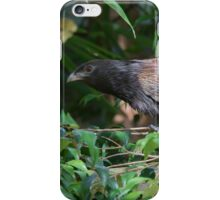 Fence Creeping iPhone Case/Skin